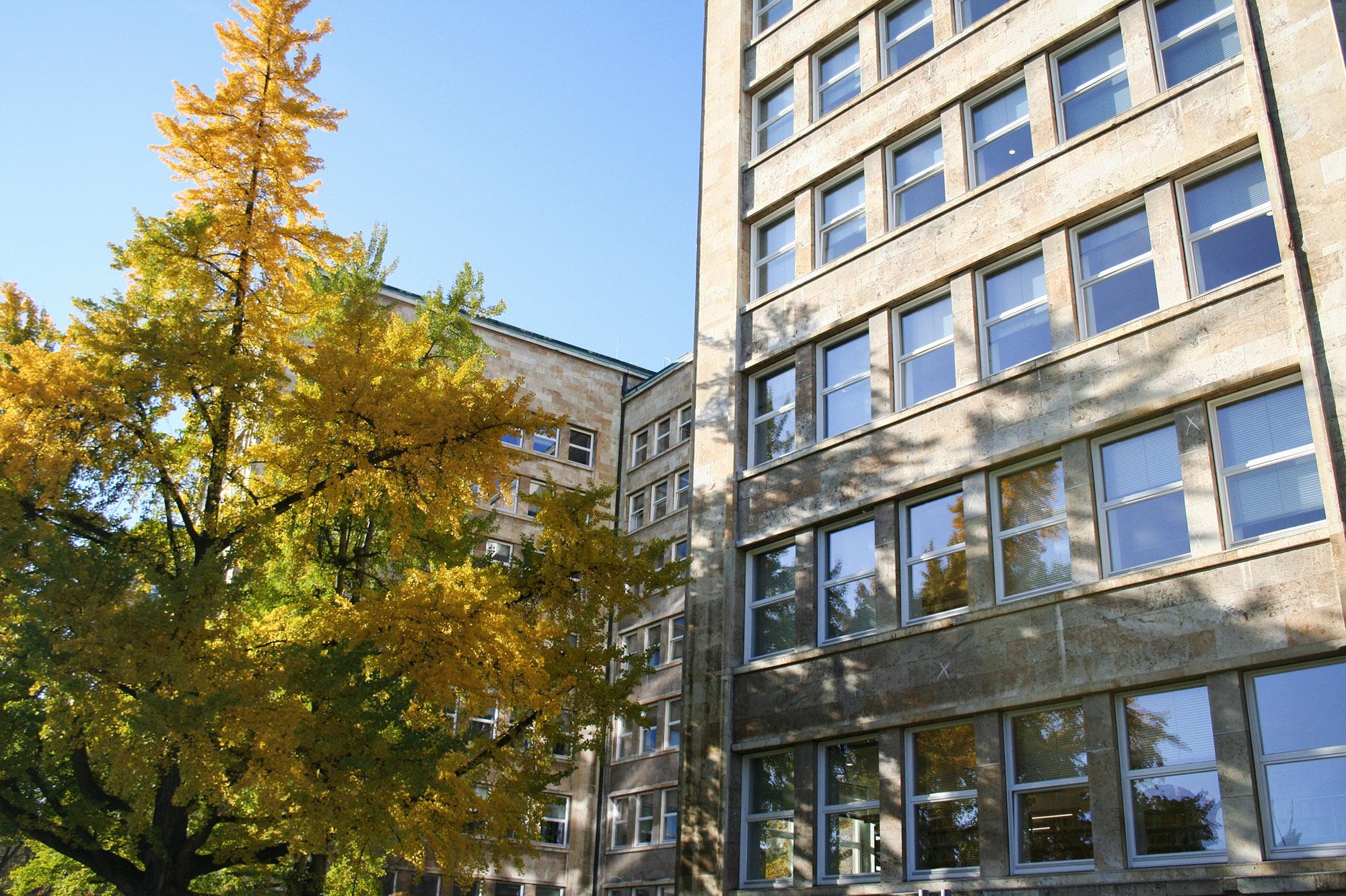 uni-frankfurt-zweitstudium-29